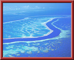 Hardy Reef, part of the Great Barrier Reef